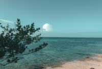 Pengertian Air Tanah Dan Laut Serta Jenis Dan Manfaatnya